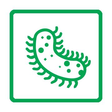 SG Safe Engineered Icons_Anti-mildew Anti-bacteria
